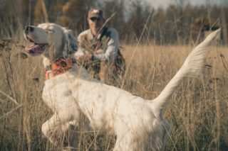 Profile of Pro Hunter Meadow Kouffeld