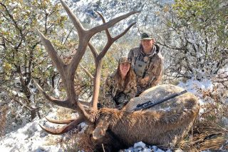 From Waterfowl to Elk, Courtesy of Winchester and Modern Huntsman